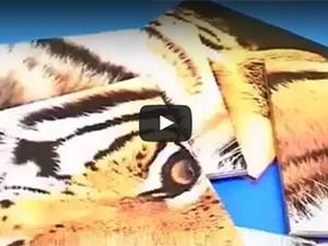 Video fotoceramica - Le fasi della stampa digitale su ceramica